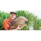 Диетические секреты рыб с Dr. Paul Garner